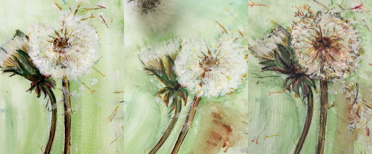 dandelions slider